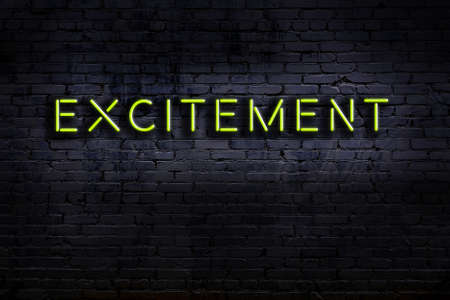 Neon sign on brick wall at night. Inscription excitement