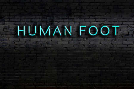 Neon sign with inscription human foot against brick wall. Night view Reklamní fotografie