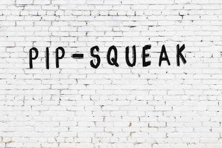 Inscription pip-squeak written with black paint on white brick wall.