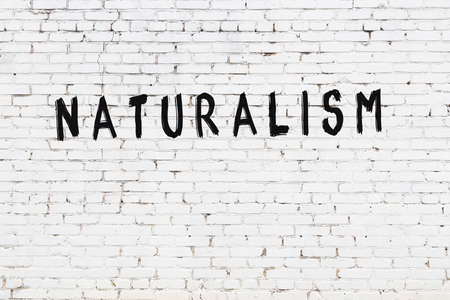 Inscription naturalism written with black paint on white brick wall.