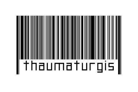 Digitalization concept. Barcode of black horizontal lines with inscription thaumaturgist below.