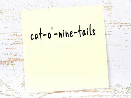 Concept of reminder about cat-o'-nine-tails. Yellow sticky sheet of paper on wooden wall with inscription