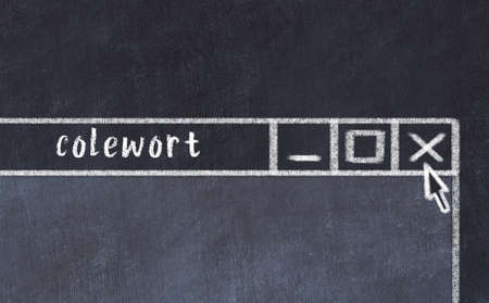 Closing browser window with caption colewort. Chalk drawing. Concept of dealing with trouble 版權商用圖片