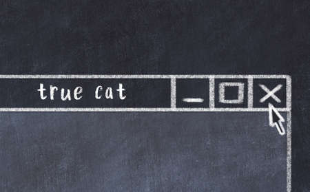 Chalk sketch of closing browser window with page header inscription true cat