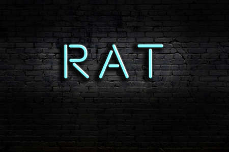 Neon sign with inscription rat against brick wall. Night view