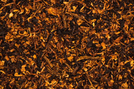 Background is of chopped tobacco leaves photo