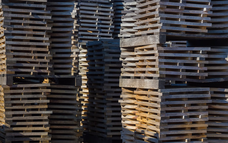 sidewall: Oak planks for wine barrels stacked in piles elution of tannins on the open air Stock Photo