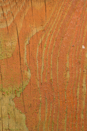 Texture of an old wooden board with peeling paint