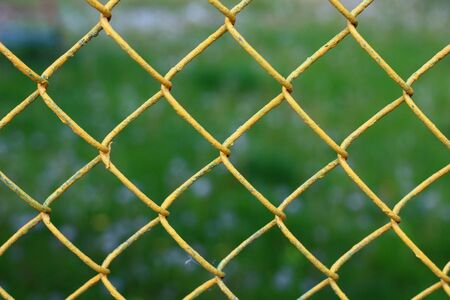 Colored chain link fence with blurry background