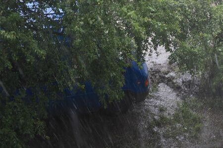Cargo bus under the branches of a tree in heavy rain. Background Stock Photo