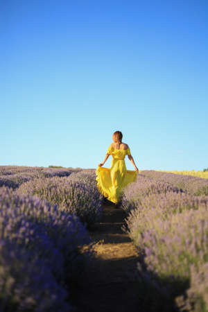 A woman in a yellow dress walks at sunset in a lavender field. View from the back, toned background. Concept of freedom and happiness Foto de archivo