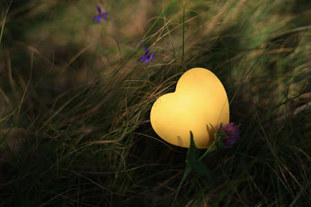 Heart shaped paper sticker in the grass. Selective focus with blurred background. Foto de archivo - 153589172