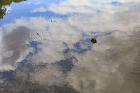 Clean and transparent fresh river water with a reflection of the sky. Selective focus. Good ecology environment concept