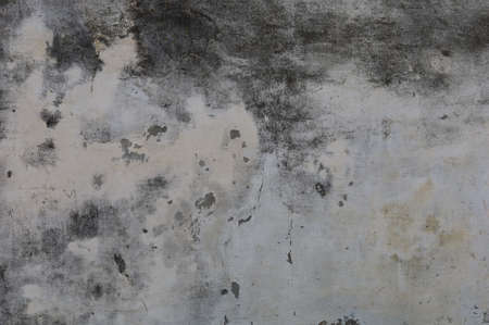 Textured rough surface of grunge wall. Background or graphic resource for design