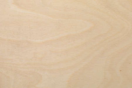 Rough wood surface. Texture for design. Background for advertising with copy space
