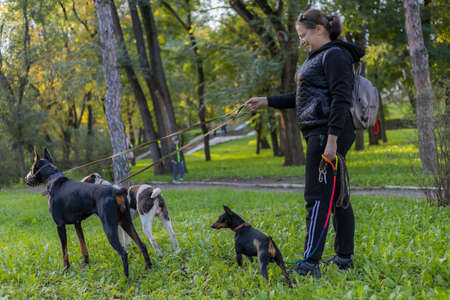 Young woman with dogs on a walk outdoors. Selective focus with blurred background. Shallow depth of field.
