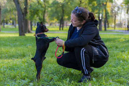 A young woman enjoys companionship with her beloved pinscher dog in a city park. Selective focus with blurred background. Shallow depth of field. Archivio Fotografico