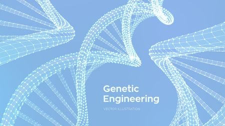 DNA sequence. Wireframe DNA molecules structure mesh. DNA code editable template. Science and Technology concept. Vector illustration. Ilustração