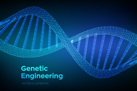 DNA sequence. Concept binary code human genome. Wireframe digital DNA molecules structure mesh. Artifical intelegence DNA code editable template. Science and Technology concept. Vector illustration Ilustração