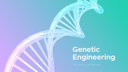 DNA sequence. Abstract 3d polygonal wireframe DNA molecules structure mesh. DNA code editable template. Science and Technology concept. Vector illustration  イラスト・ベクター素材
