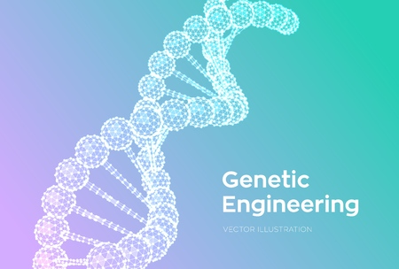 DNA sequence. Wireframe DNA molecules structure mesh. DNA code editable template. Science and Technology concept. Vector illustration 写真素材 - 122476376