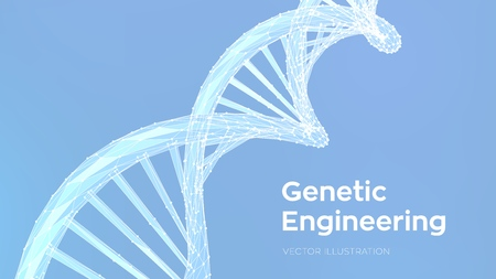 DNA sequence. Abstract 3d polygonal wireframe DNA molecules structure mesh. DNA code editable template. Science and Technology concept. Vector illustration 写真素材 - 122476389