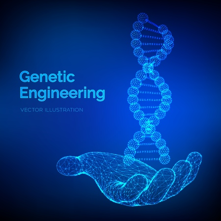 DNA sequence in hand. Wireframe DNA molecules structure mesh. DNA code editable template. Science and Technology concept. Vector illustration 写真素材 - 122476404