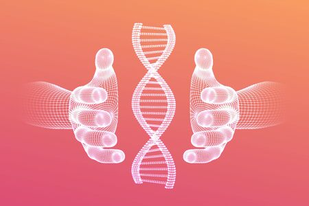 DNA sequence in hands. Wireframe DNA molecules structure mesh. DNA code editable template. Science and Technology concept. Vector illustration  イラスト・ベクター素材