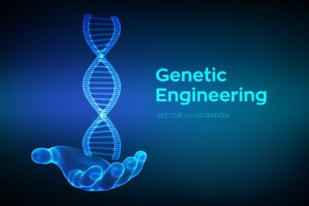 DNA sequence in hand. Wireframe DNA molecules structure mesh. DNA code editable template. Science and Technology concept. Vector illustration