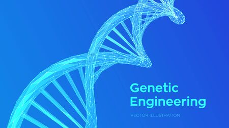 DNA sequence. Abstract 3d polygonal wireframe DNA molecules structure mesh. DNA code editable template. Science and Technology concept. Vector illustration
