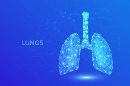 Lungs. Low polygonal human respiratory system lungs anatomy. Treatment of lung diseases. Medicine cure tuberculosis, pneumonia, asthma. Abstract health care medical concept. Vector illustration