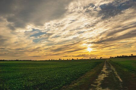 Country road and beautiful valley, nature landscape. Green Field and Beautiful Sunset. Banco de Imagens