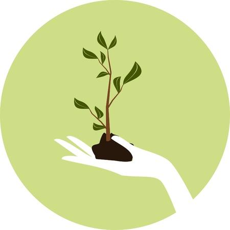 Illustratie van een hand die een jonge groene plant.