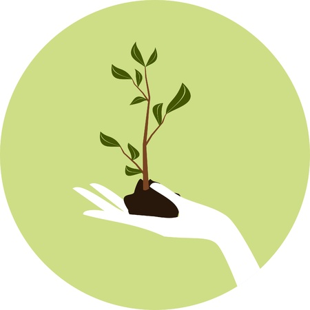 Illustration of a hand holding a young green plant.