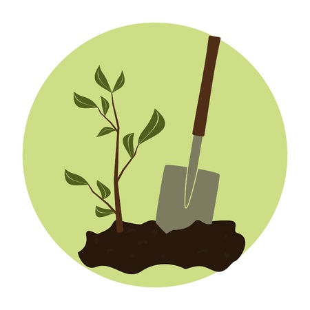 dirt background: Illustration of a young green plant and a shovel against green background. Arbor day concept.
