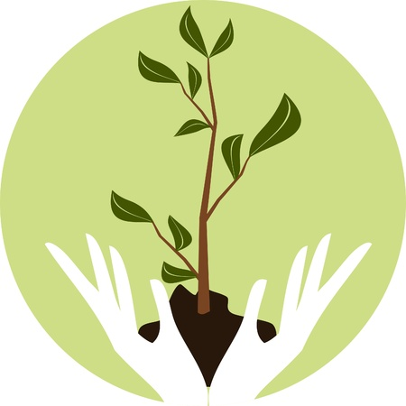 Illustration of human hands holding a young green plant. Vector