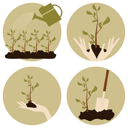 environmental protection: A set of four gardening icons   Ecological awareness concept  Illustration
