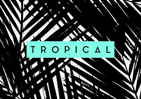 """Diseño del cartel negro con la palma deja siluetas y el texto """"Tropical""""."""
