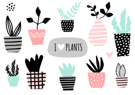 A set of cute pots with succulent plants in black, white, pink, gray and green, isolated on white background.