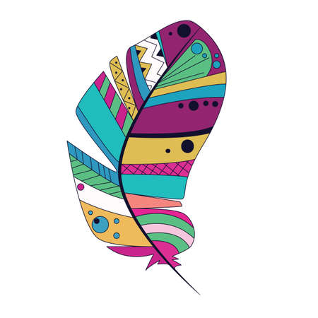 lightness: colorful feather on a white background Illustration