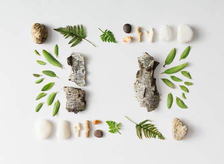 bark background: Creative natural layout made of leaves, stones, and tree bark on white background. Flat lay. Stock Photo