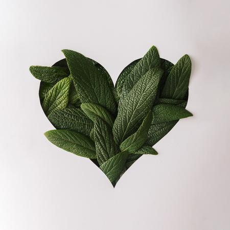 緑の葉と形状ハートカット愛の概念。フラットが横たわっていた。 写真素材