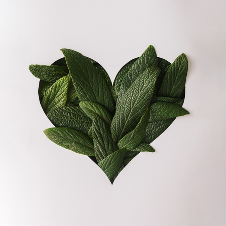 Heart shape cutout with green leaves. Love concept. Flat lay. Imagens - 70341893