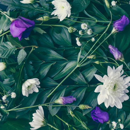 Creative layout made of green leaves and flowers. Flat lay. Nature background