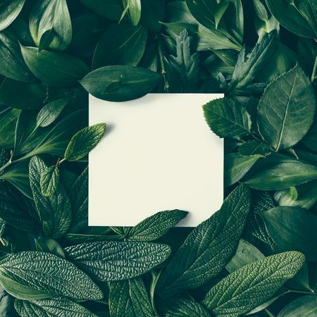 Diseño creativo hecho de flores y hojas con nota de tarjeta de papel. Lecho plano. Concepto de la naturaleza