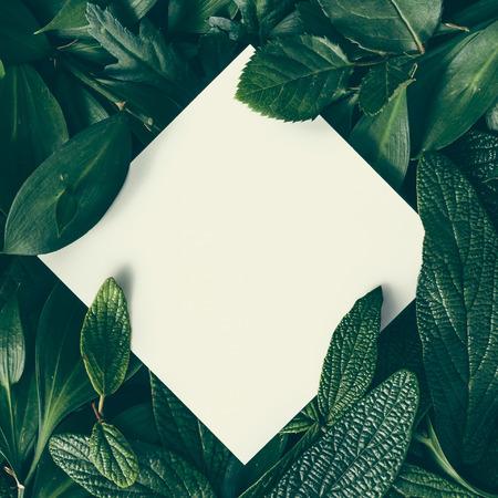 Creatieve lay-out gemaakt van bloemen en bladeren met papieren kaartje. Vlak liggen. Natuur concept