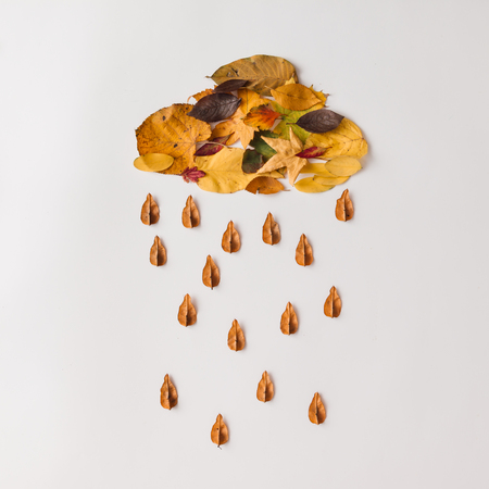 Autumn leaves in shape of cloud with rain. Flat lay. Weather concept.