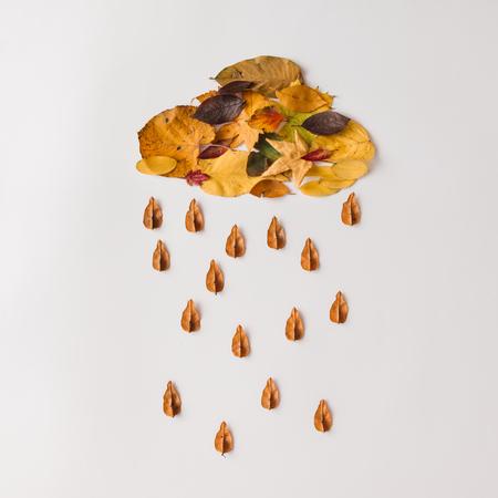 De herfstbladeren in vorm van wolk met regen. Plat leggen. Weer concept.