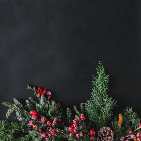 Christmas background made of natural winter things on dark blackboard. Flat lay.