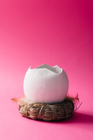 Cracked egg shell in nest on pink background